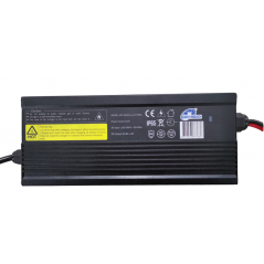 Caricabatteria per Energy Research Batteria Litio 36 Vdc 100 Ah BT - 1